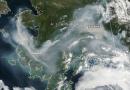 Hitzerekorde und Brände in Alaska